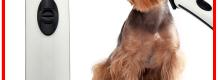 kutya-telamonbelyegzo
